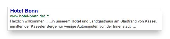 SERP para Hotel Bonn